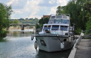 C'est la Vie on damaged pontoon