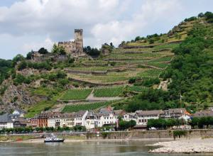 Great view  - Castle -Vine Yards- Village- Rhine and Boat